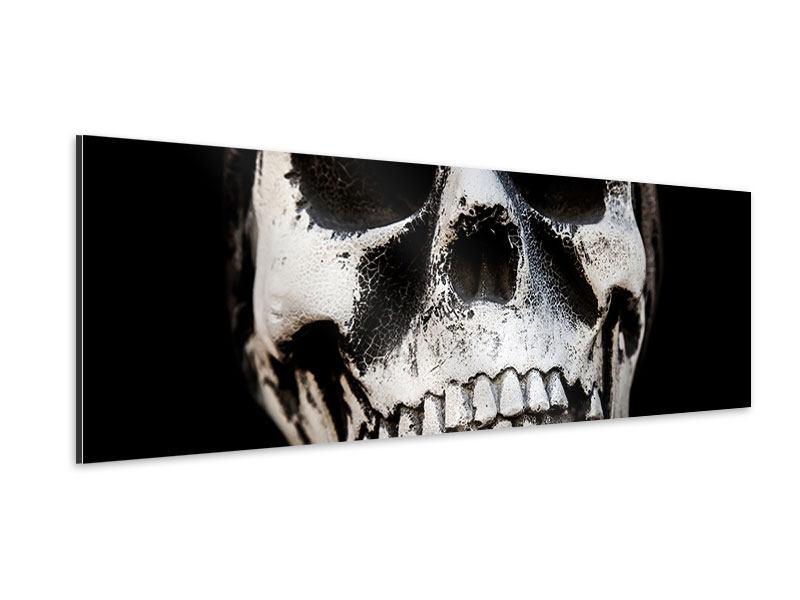 Aluminiumbild Panorama Skull