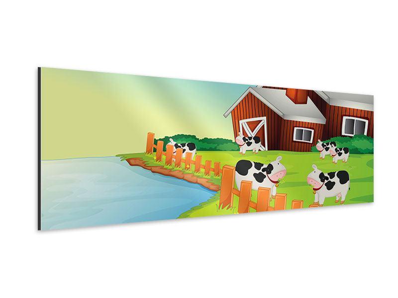 Aluminiumbild Panorama Eine Kuh macht Muh