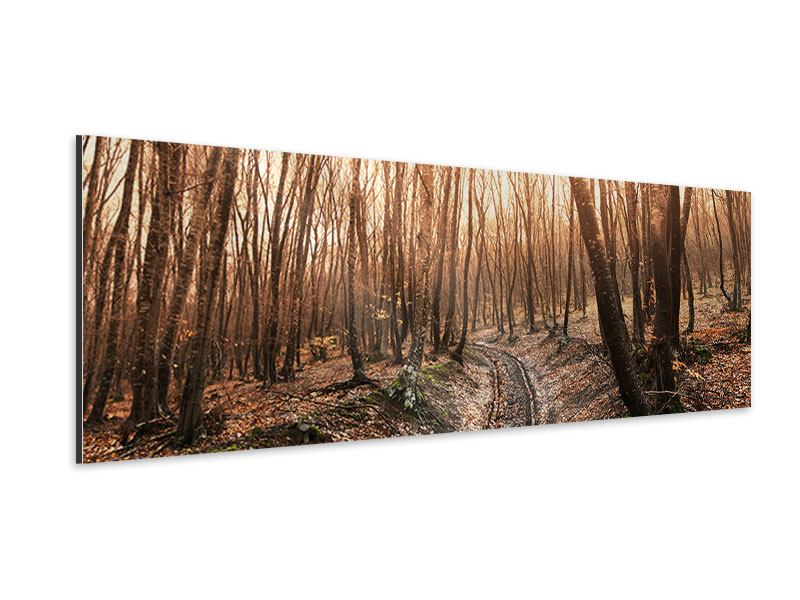 Aluminiumbild Panorama Der kahle Wald
