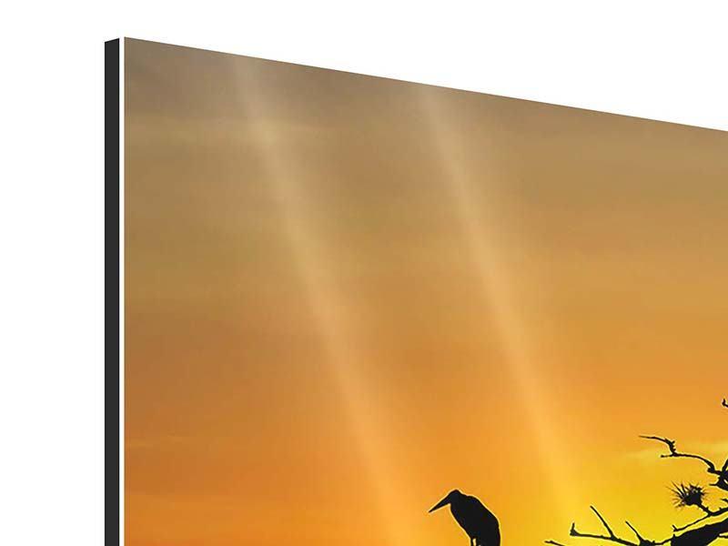 Aluminiumbild Panorama Safarietiere bei Sonnenuntergang