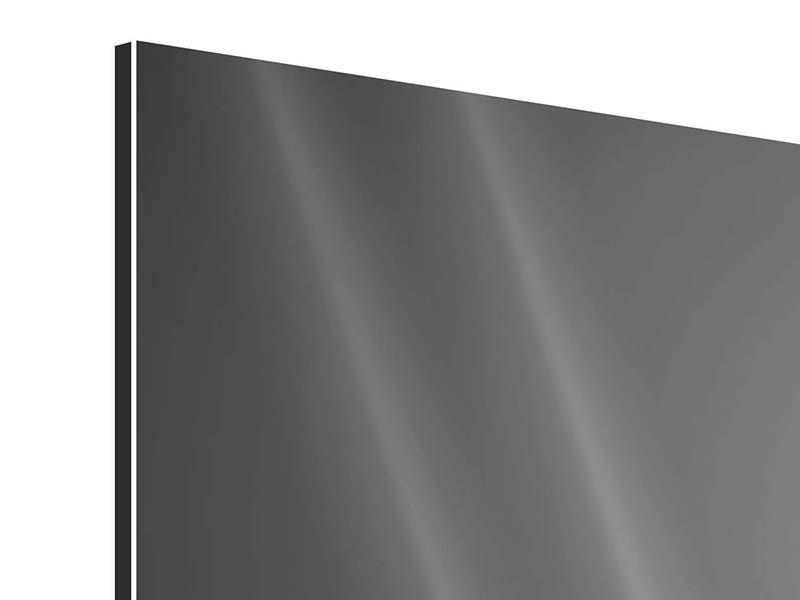 Aluminiumbild Panorama Katzenlady