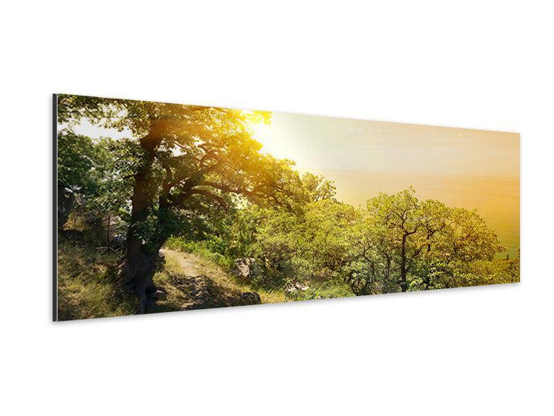Aluminiumbild Panorama Sonnenuntergang in der Natur