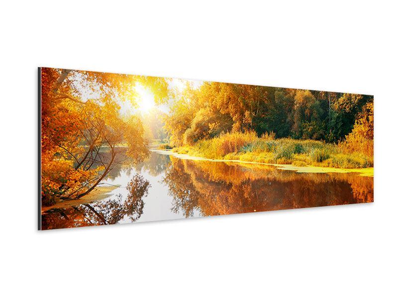Aluminiumbild Panorama Waldspiegelung im Wasser