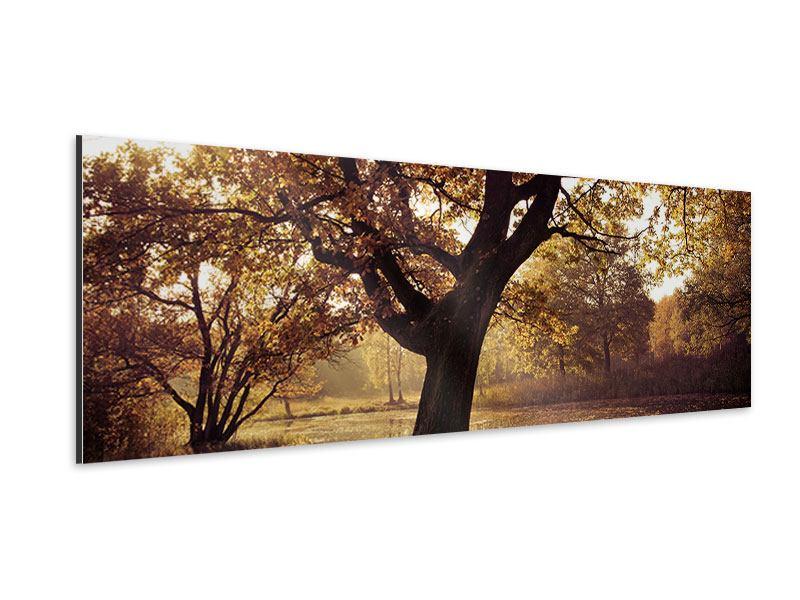 Aluminiumbild Panorama Landschaftspark