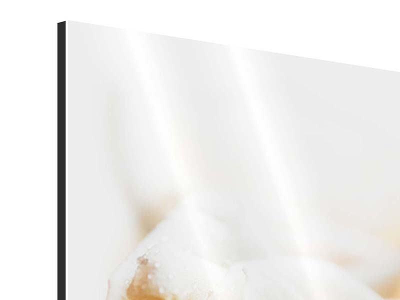 Aluminiumbild Panorama Rosenperspektive