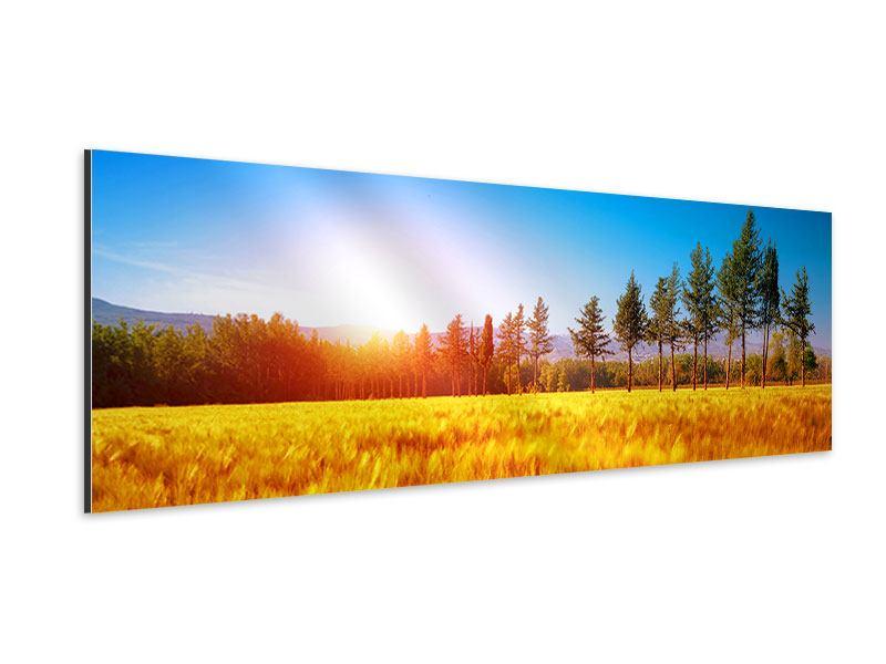 Aluminiumbild Panorama Der Herbst