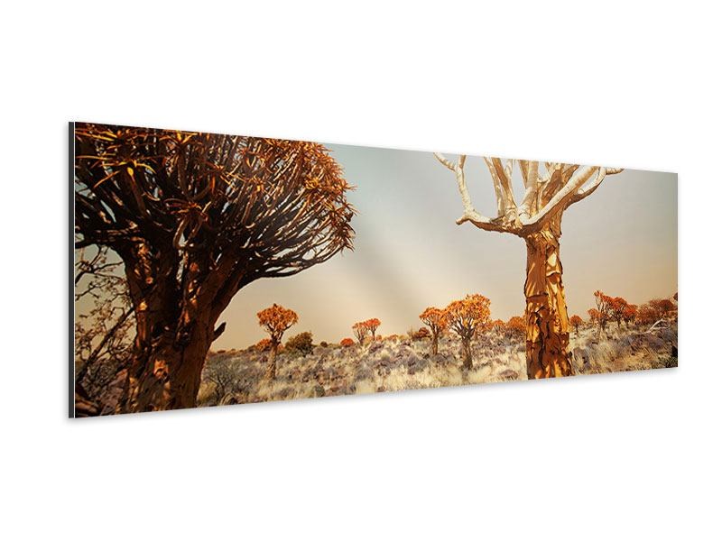 Aluminiumbild Panorama Afrikanische Landschaft