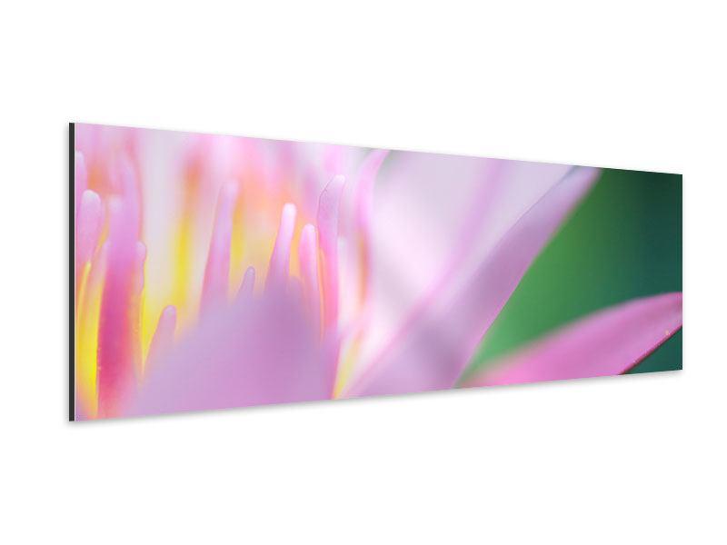 Aluminiumbild Panorama XXL-Lilie