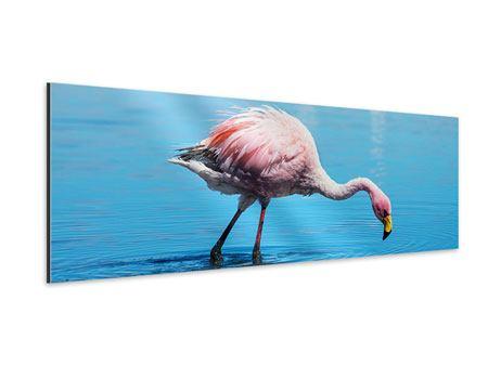 Aluminiumbild Panorama Der Flamingo