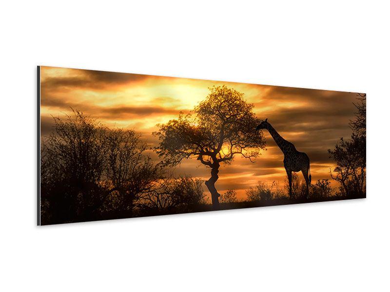 Aluminiumbild Panorama African Dreams