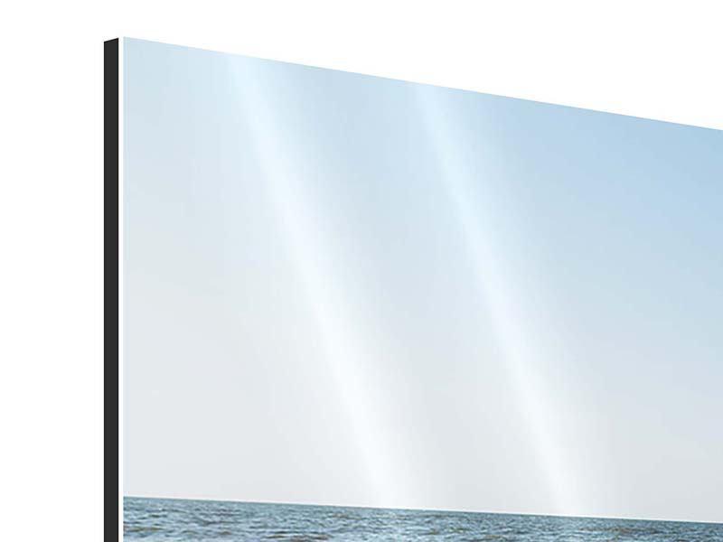 Aluminiumbild Panorama Sandspuren