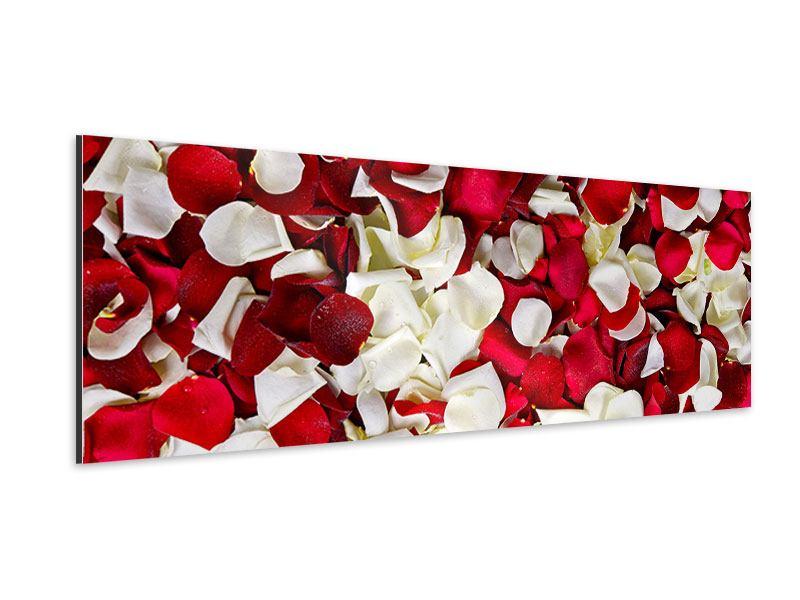 Aluminiumbild Panorama Rosenblätter