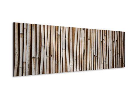 Aluminiumbild Panorama Getrocknete Bambusrohre
