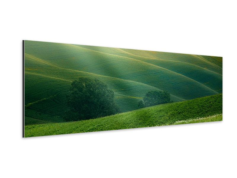 Aluminiumbild Panorama Toskana
