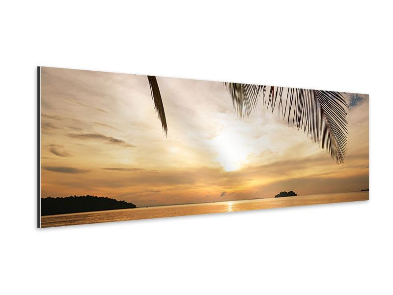 Aluminiumbild Panorama Strandpalme