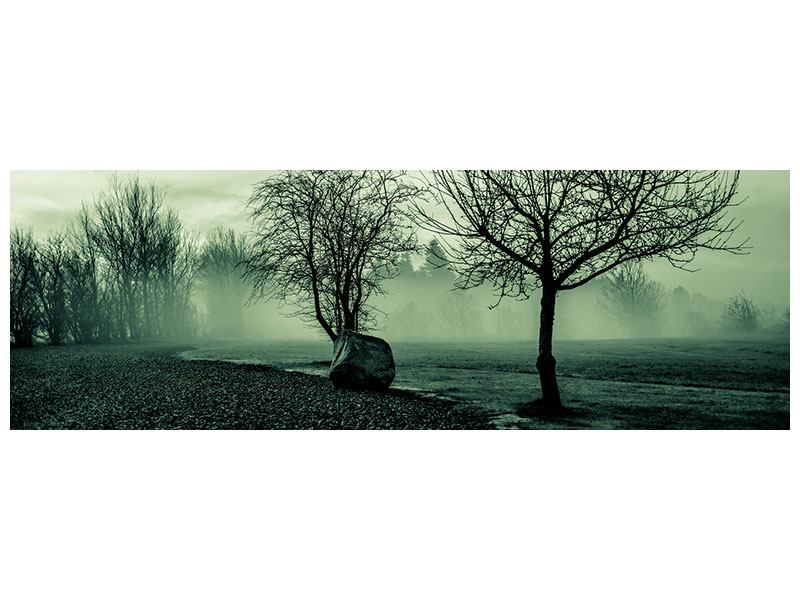 Aluminiumbild Panorama Der Auwald im Nebel