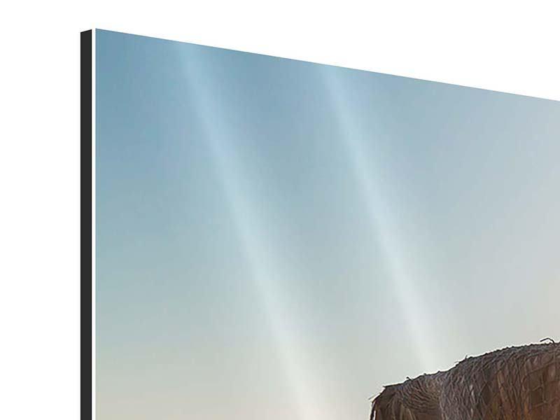 Aluminiumbild Panorama Der Sonnenschirm
