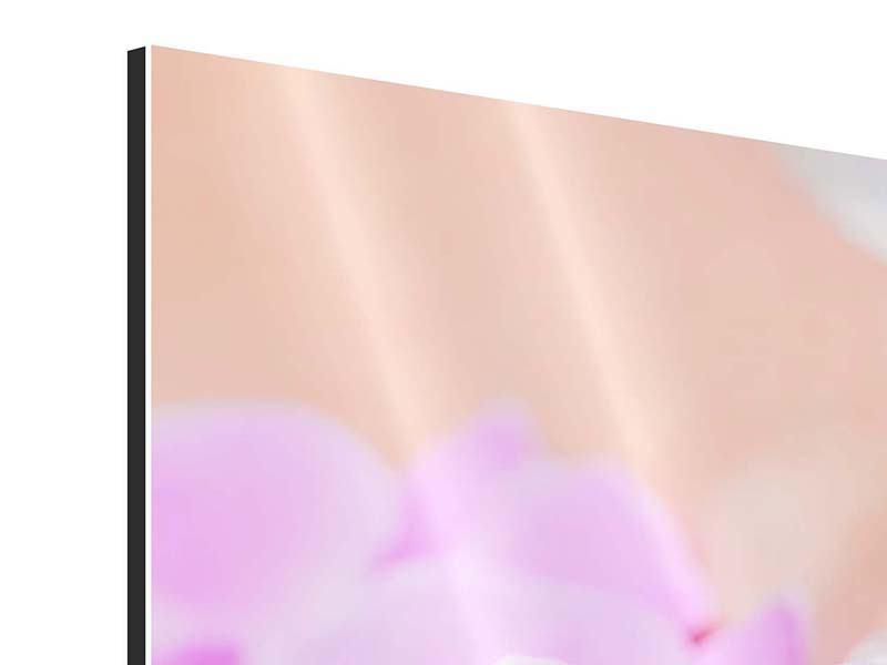 Aluminiumbild Panorama Manikürte Hände