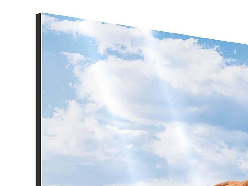 Aluminiumbild Panorama Auf der Alm