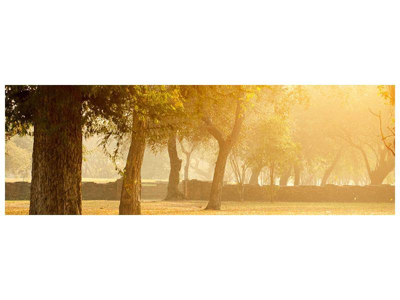 Aluminiumbild Panorama Romantik unter Bäumen