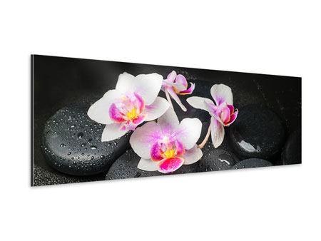 Aluminiumbild Panorama Feng-Shui-Orchidee Zen