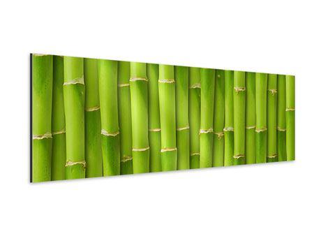 Aluminiumbild Panorama Bambuswand