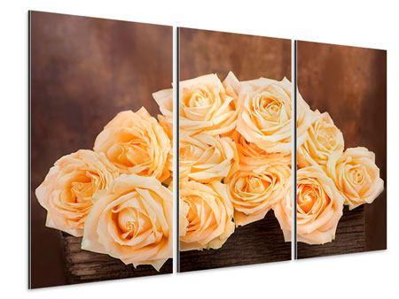 Aluminiumbild 3-teilig Die Rosenzeit