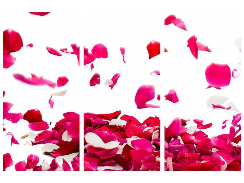 Aluminiumbild 3-teilig Für mich soll`s rote Rosen regnen