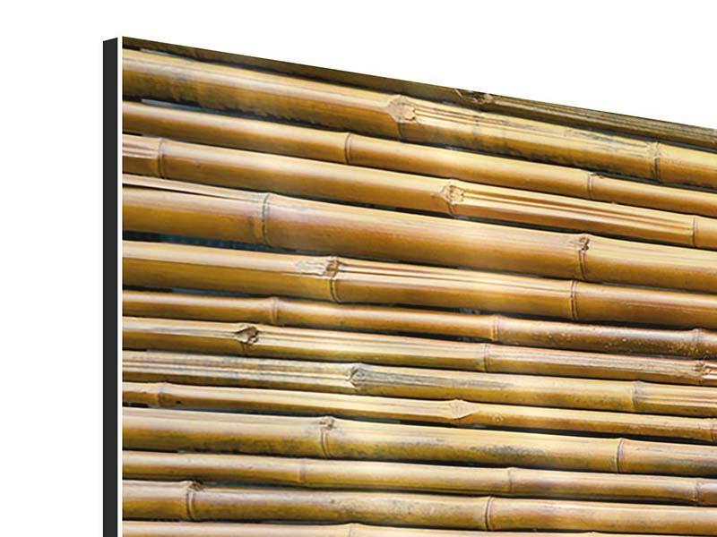 Aluminiumbild 3-teilig Bambus