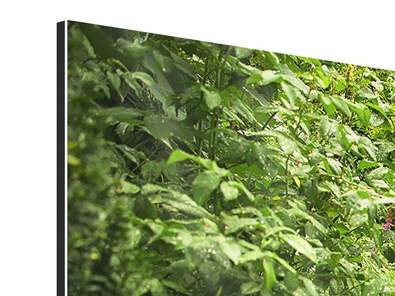 Aluminiumbild 3-teilig Gartenweg