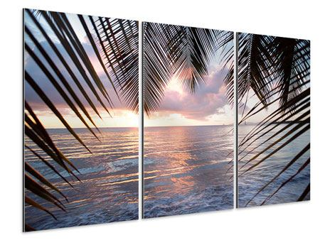 Aluminiumbild 3-teilig Unter Palmenblätter