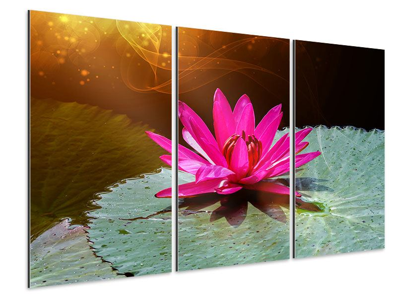 Aluminiumbild 3-teilig Der Frosch und das Seerosenblatt