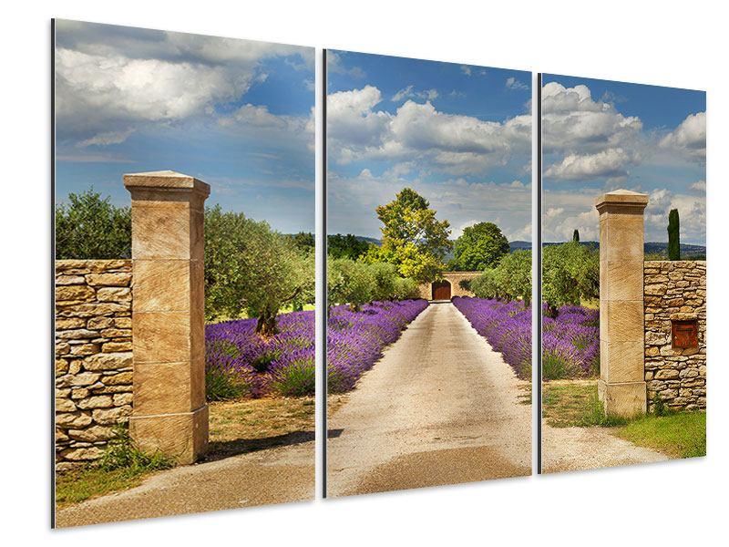 Aluminiumbild 3-teilig Lavendel-Garten