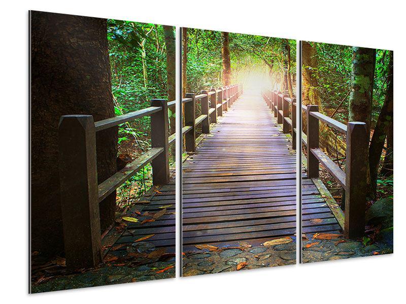 Aluminiumbild 3-teilig Die Brücke im Wald