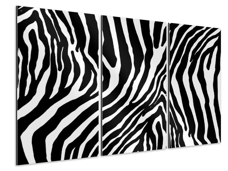 Aluminiumbild 3-teilig Zebramuster