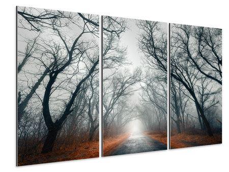 Aluminiumbild 3-teilig Mysteriöse Stimmung im Wald