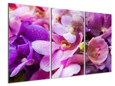 Aluminiumbild 3-teilig Im Orchideenparadies