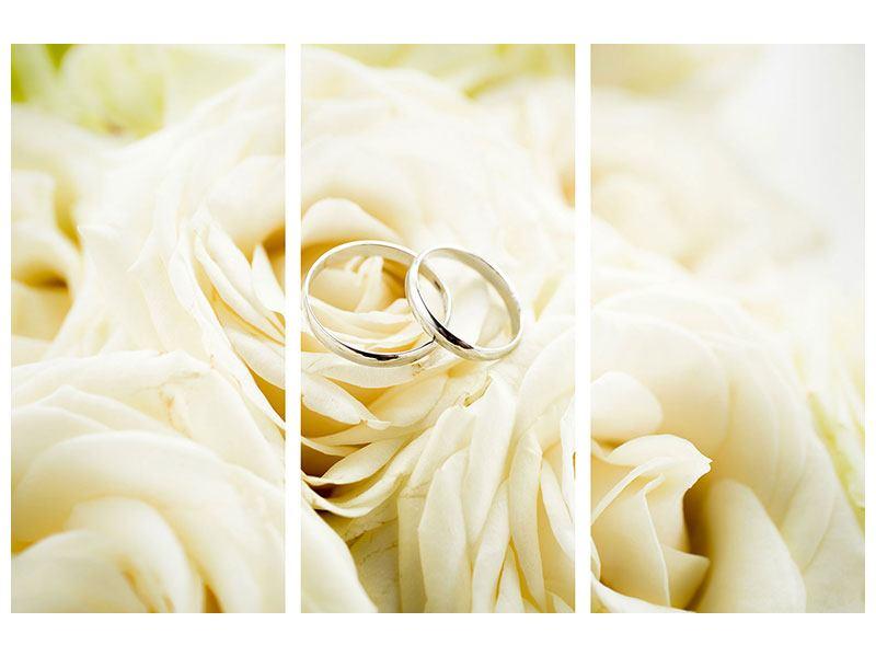 Aluminiumbild 3-teilig Trauringe auf Rosen gebettet