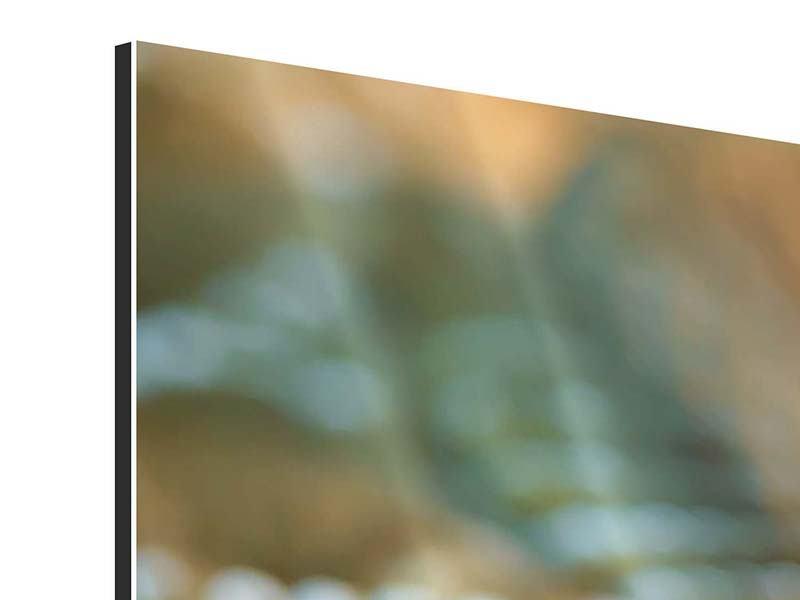 Aluminiumbild 3-teilig Viper