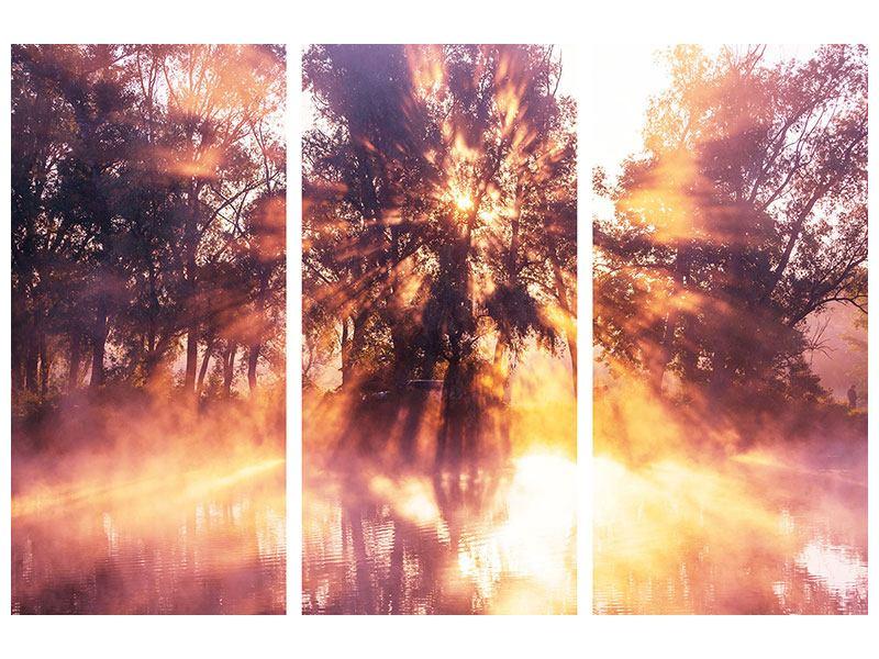Aluminiumbild 3-teilig Die Waldspiegelung
