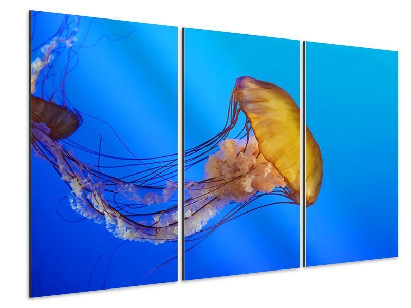 Aluminiumbild 3-teilig Medusa
