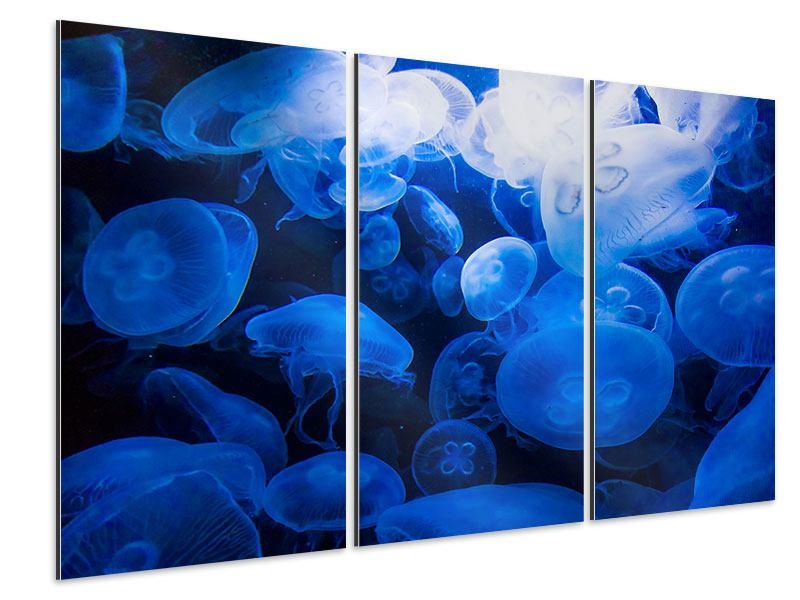 Aluminiumbild 3-teilig Quallen