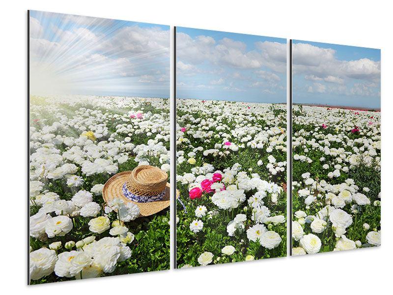 Aluminiumbild 3-teilig Die Frühlingsblumenwiese