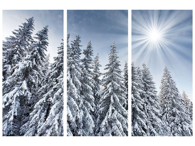 Aluminiumbild 3-teilig Wintertannen