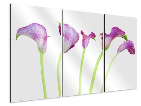 Aluminiumbild 3-teilig Callas in Lila