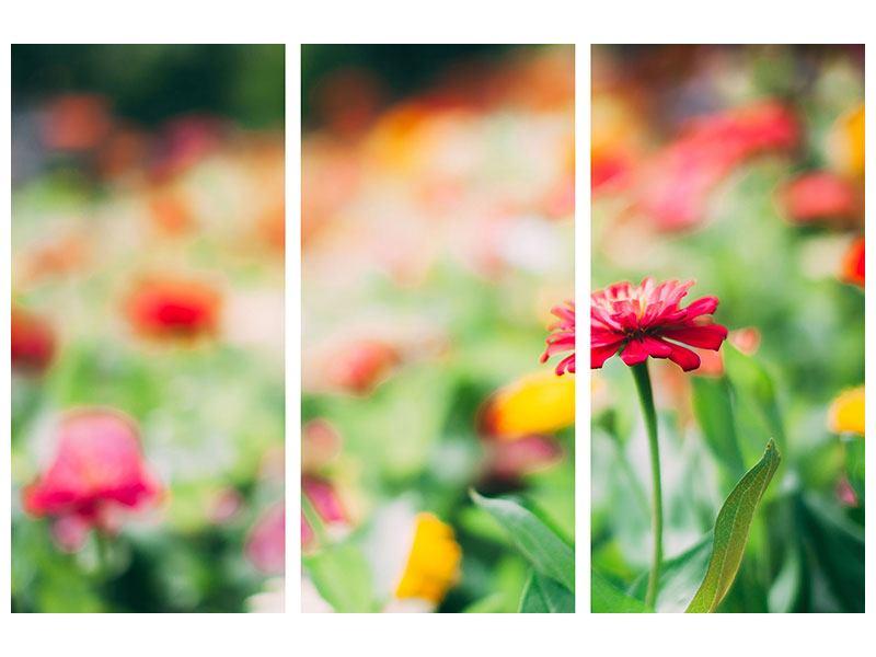 Aluminiumbild 3-teilig Im Blumengarten