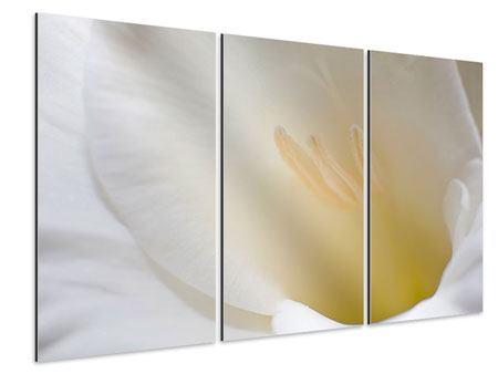 Aluminiumbild 3-teilig In einer Blüte