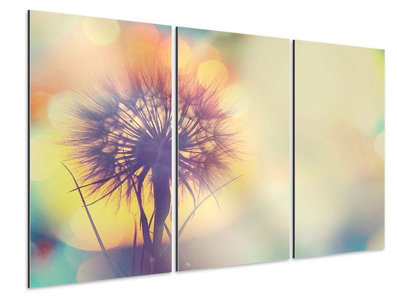 Aluminiumbild 3-teilig Die Pusteblume im Licht