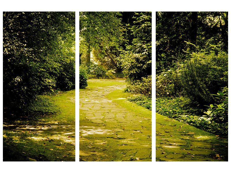 Aluminiumbild 3-teilig Der bemooste Weg