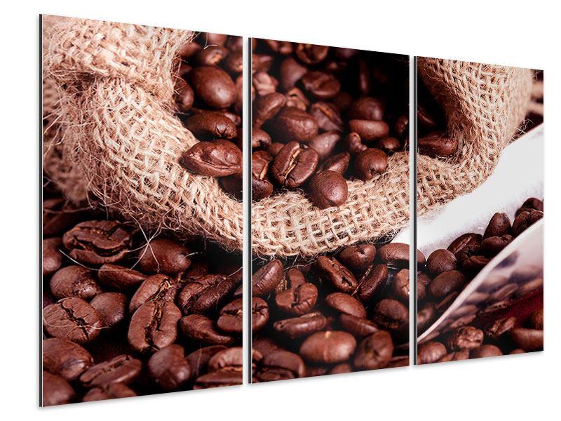 Aluminiumbild 3-teilig XXL Kaffeebohnen